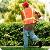 Lawn Mowing | Lawn Mowing Melbourne